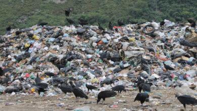 Photo of Cuestionan falta voluntad de los alcaldes para buscar una salida a la crisis de la basura en Chiloé