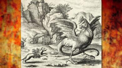 Photo of Breve enciclopedia del miedo: El Basilisco