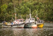 Photo of Pescadores de Aysén aprueban renovar Zonas Contiguas con Los Lagos