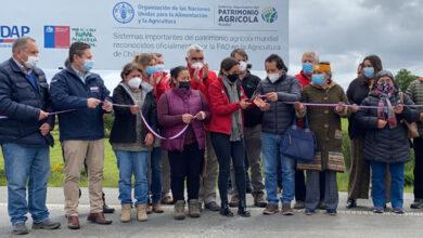 Photo of Conmemoran décimo aniversario de la Declaración del Sello SIPAM Chiloé